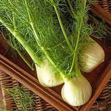 Use the Fronds! My Love for Fennel