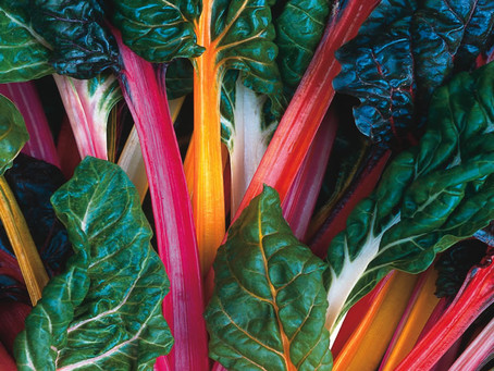 The Bright Lights of Swiss Chard