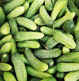 Pickle chantal-garnier-b7mRT2B9QG4-unspl