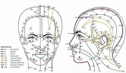 points-reflexologie-faciale.webp