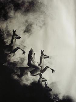 03-Cavale-Argent sur noir