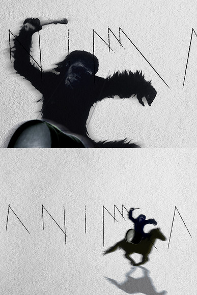 dyptik-ANIMA-2.jpg