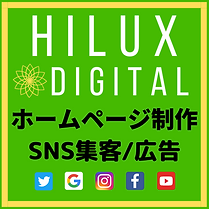 Hilux Qube (3).png
