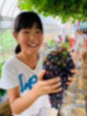 grape 01.jpg