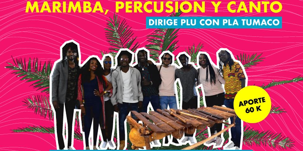Música: Taller de músicas y de marimba, percusión y canto