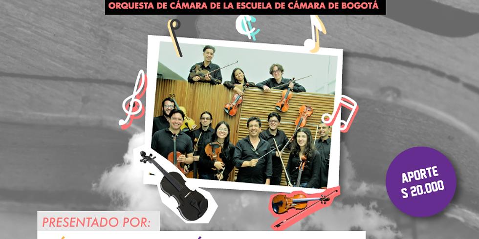 MÚSICA:Classique presenta La Orquesta de Cámara: Camerita.