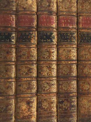Detail der Buchrücken nach der Restaurierung.