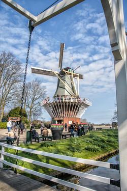 Keukenhof Windmill