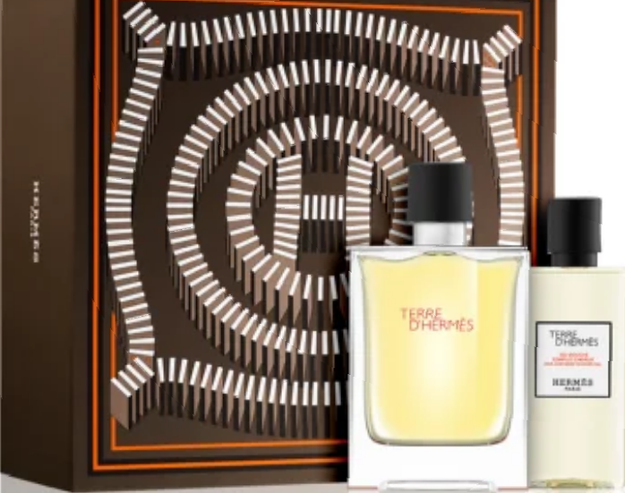 Hermès Terre d'Hermès Gift Set 50ml EDT + 40ml Shower Gel