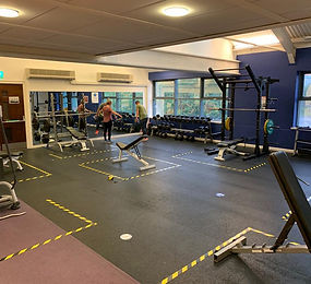 lifelines gym covid-19.jpeg