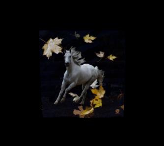 horse-w-leaves-16x16-poly-chiffon-scarf