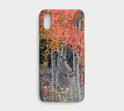 multi-colored-aspen-lexan-iphonex-ca