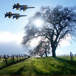 1000px-8x8-star-tree-w-blue-angels