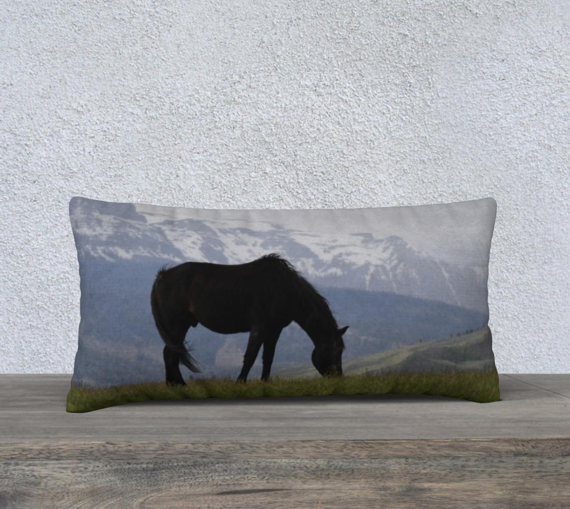 black-beauty-pillow-24x12