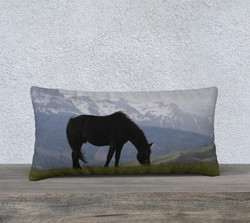 black-beauty-pillow-24x12