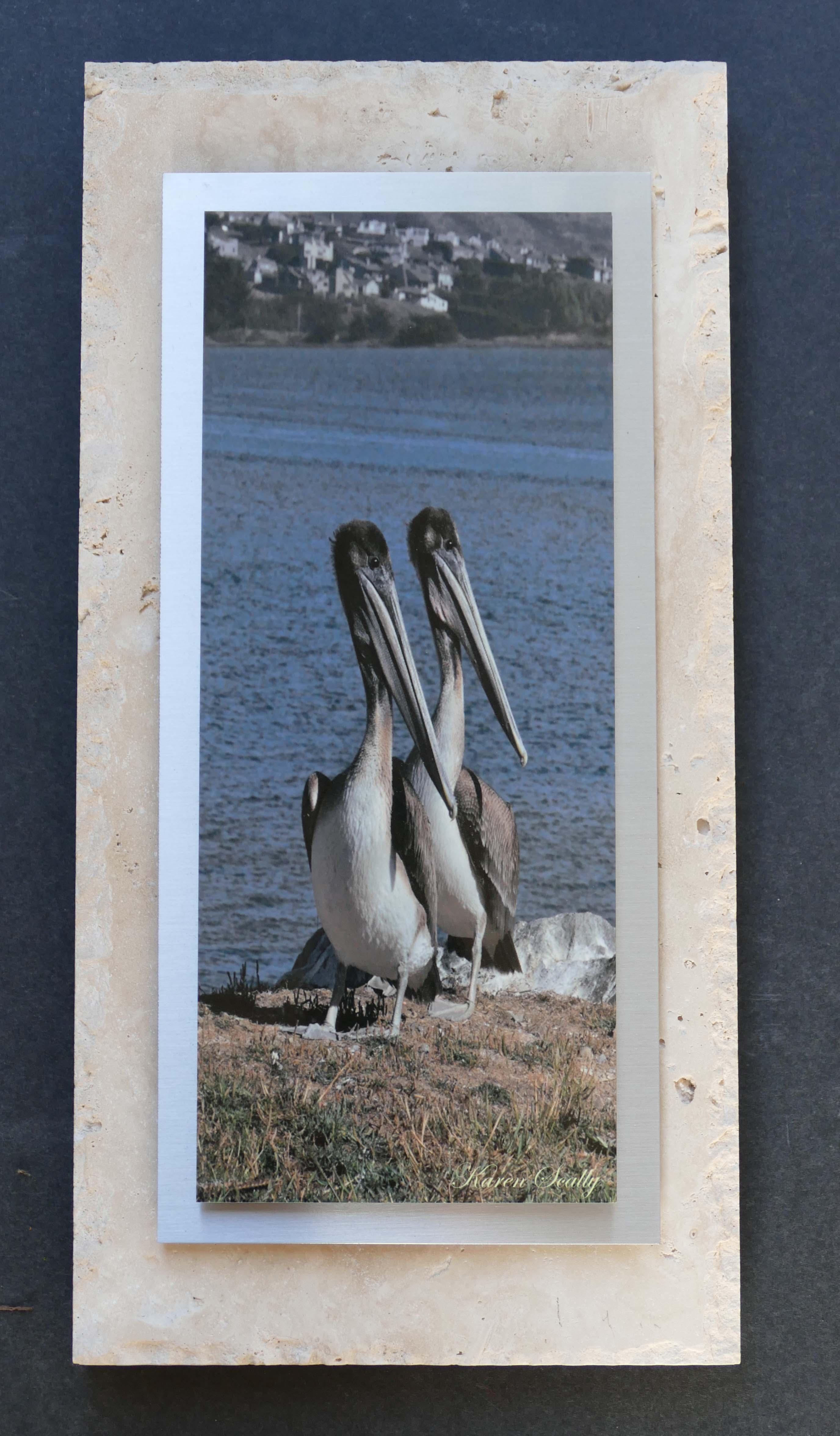 Pelican Boys Silver on Travertine