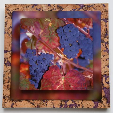 Grape Cluster on Purple cork