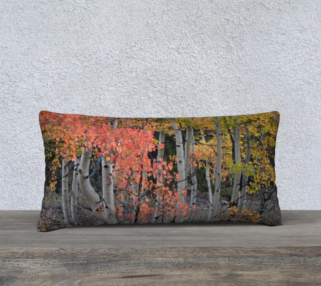 multi-colored-aspen-pillow-24x12