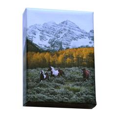 5x7 Maroon Bells Horses on Canvas
