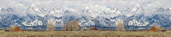 Teton Scarf 72x16