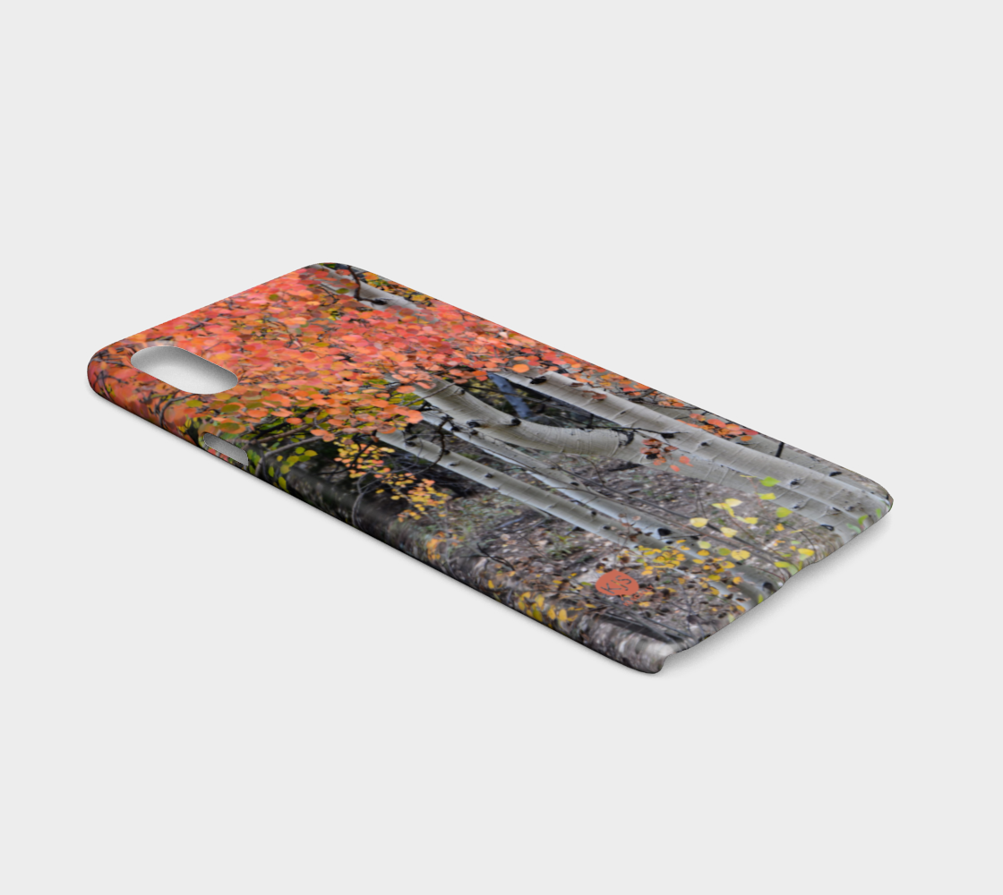 multi-colored-aspen-lexan-iphonex-ca