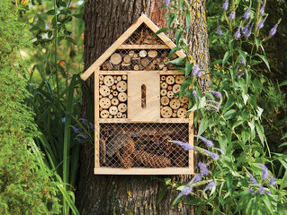 checking in Host Friendly Pollinators with a Bee Hotel WRITTEN BY CATRIONA TUDOR ERLER