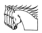 Logo Xenos.png