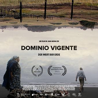 Dominio Vigente.jpg