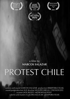 Protest CHILE Laureles.png