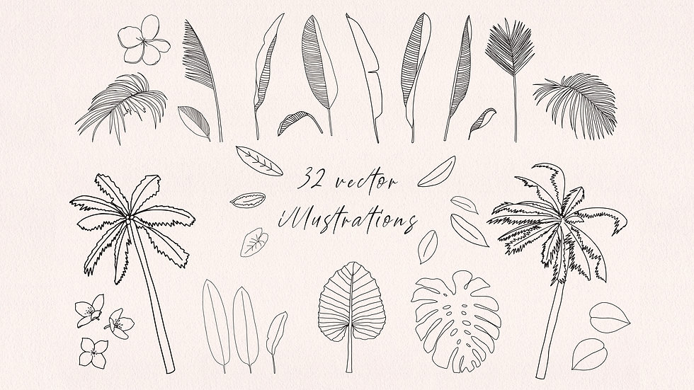 Tropical Plants Vector illustrations