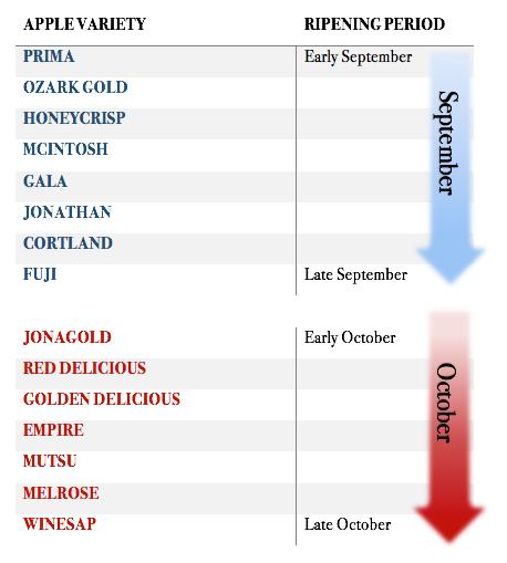 Ripening Chart