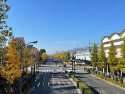 区議会の論点:高島平が都市計画区域マスタープランの拠点から外れた理由