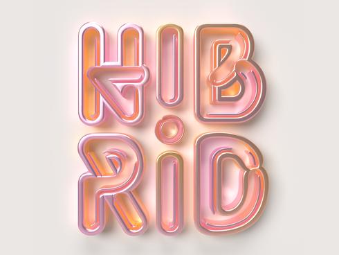 • Hibrid Music Festival