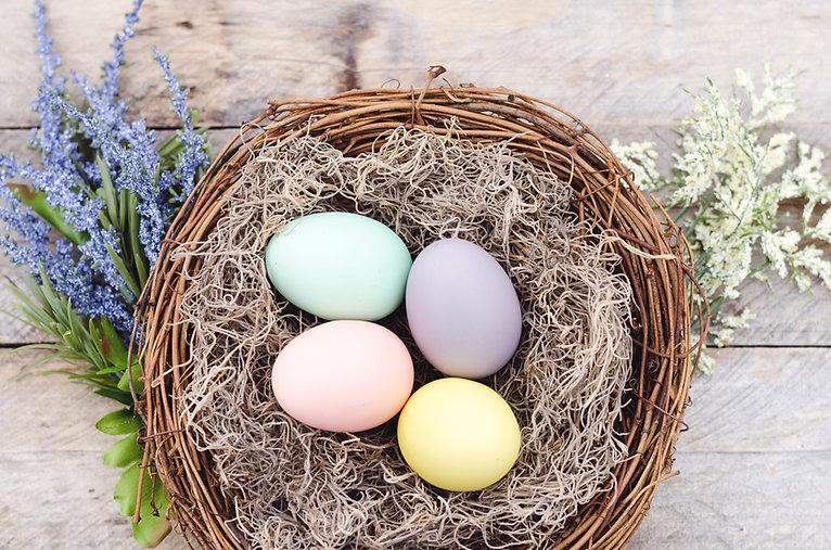 Färgglada ägg i korgen