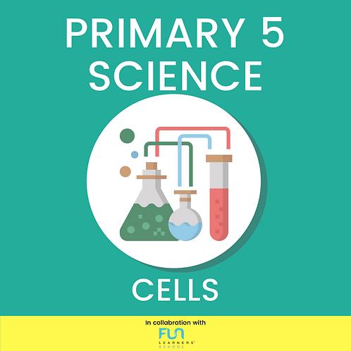 P5 SCI - Cells