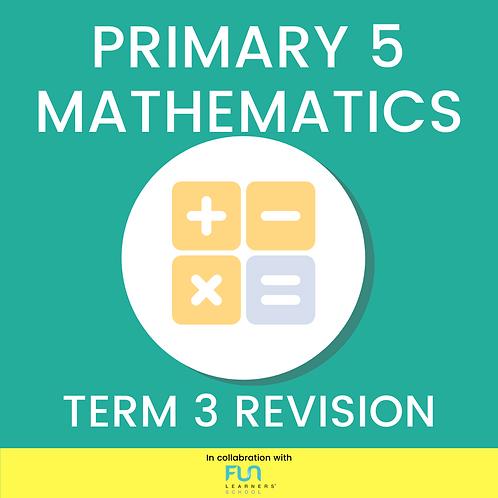 P5 MATH - Term 3 Revision