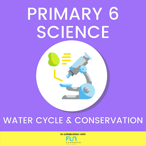 P6 SCI - Water Cycle & Conservation Revision