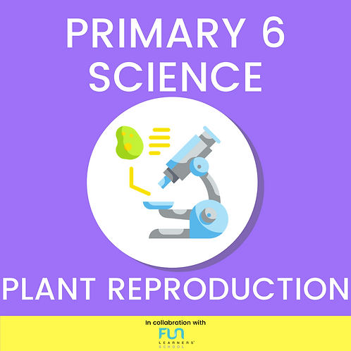P6 SCI - Plant Reproduction Revision
