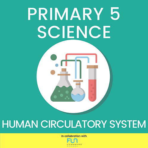 P5 SCI - Human Circulatory System