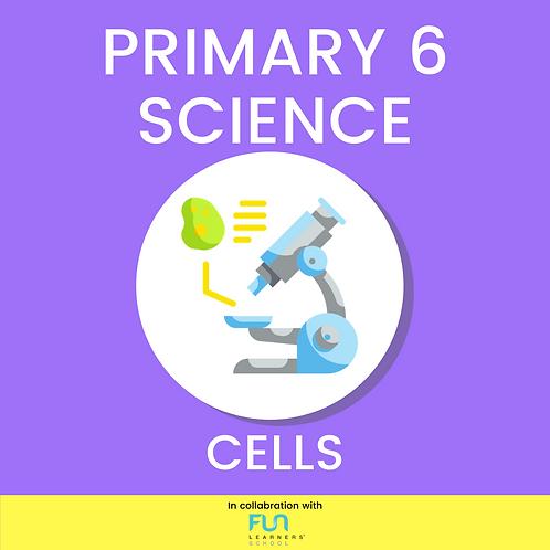 P6 SCI - Cells Revision
