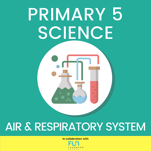 P5 SCI - Air & Respiratory System