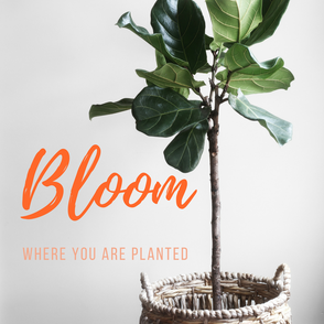 3 Life Lessons We Can Learn From Plants
