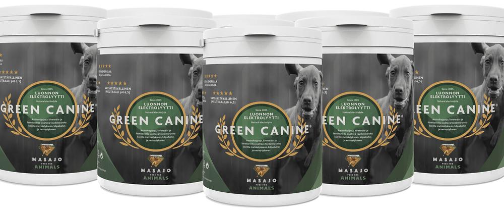 Green Canine koiratuote testattiin