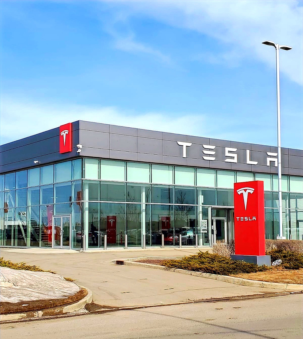 Window Shades for Tesla by Trade West