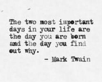 mark twain quote.jpg
