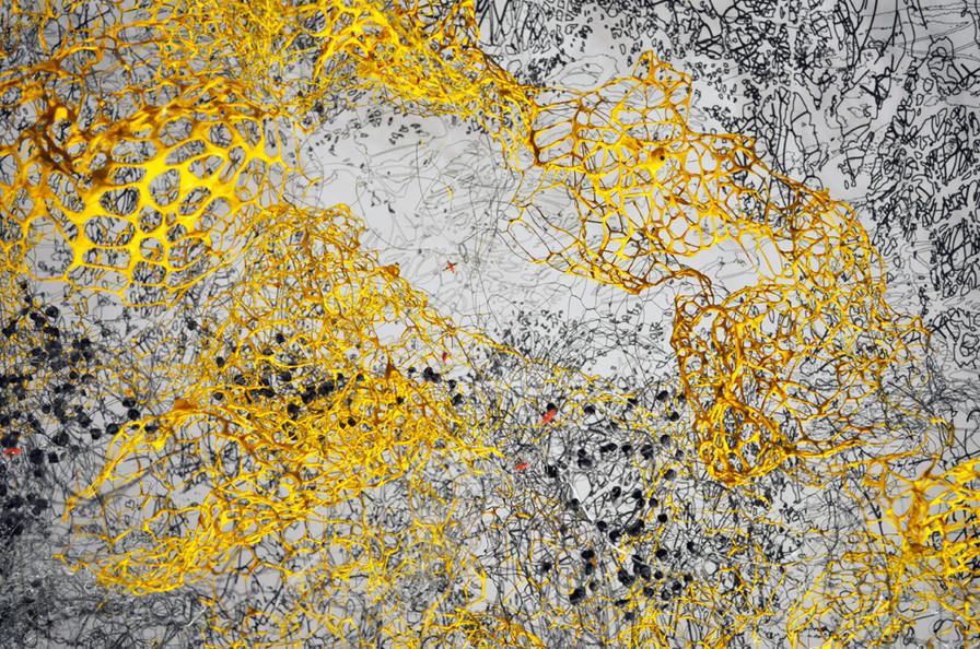 Untitled Synapse #1
