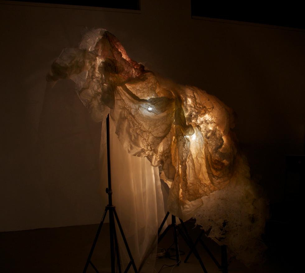 Couture Nebula