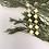 Thumbnail: Gold Plated Diamond Hanging Earrings