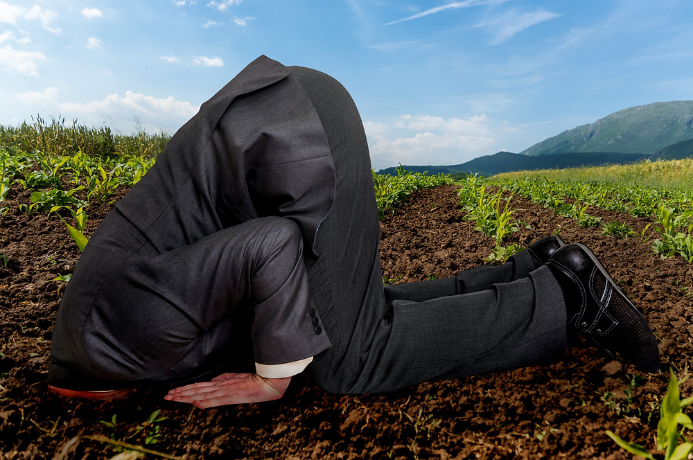 Oblivious businessman with head buried