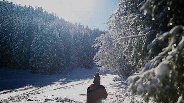 Balade hivernale OK.mp4